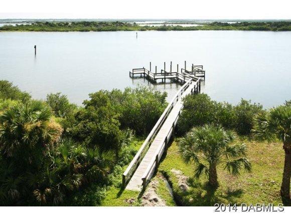 611 Riverside Landing Dr, Oak Hill, FL 32759