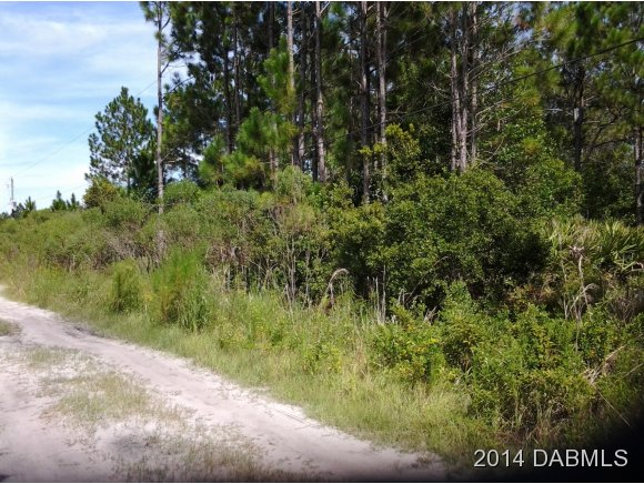Land for Sale, ListingId:29876694, location: 3759 Balsam Ct Ormond Beach 32174