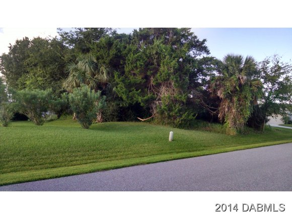 5 Crossleaf Ct W, Palm Coast, FL 32137