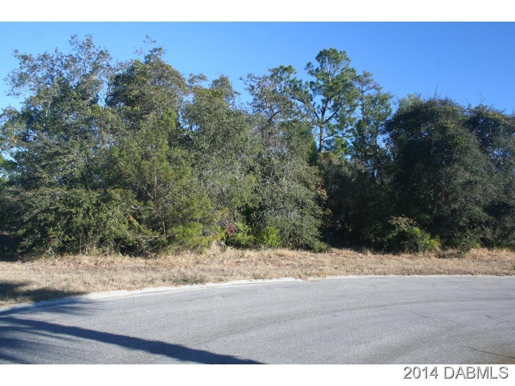 2 Deerskin Ln, Ormond Beach, FL 32174