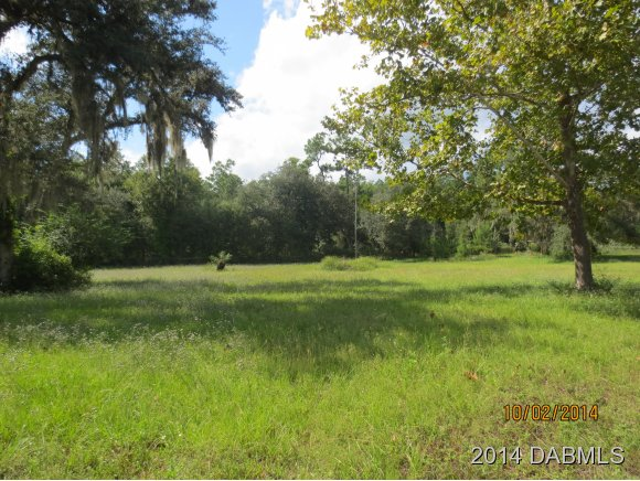 1801 Bonanza Dr, De Leon Springs, FL 32130
