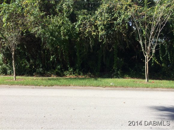 Land for Sale, ListingId:30281343, location: 230 Washington St S Ormond Beach 32174