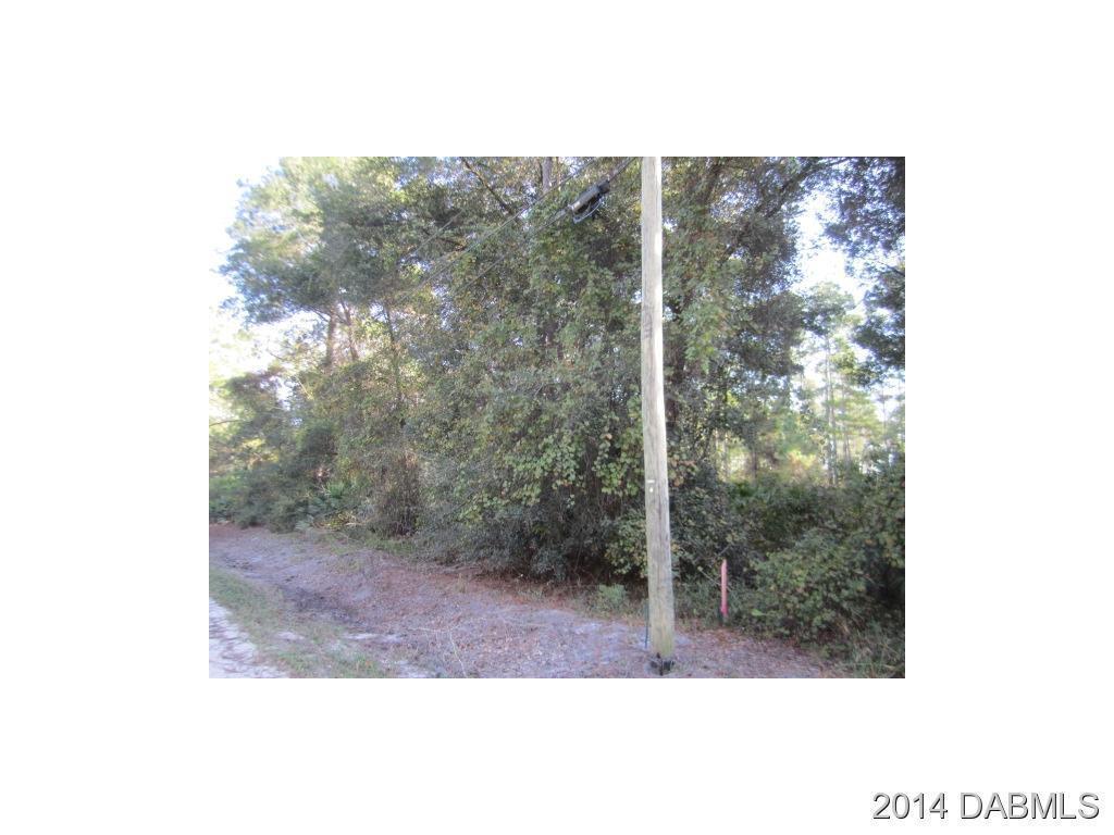 Land for Sale, ListingId:30613935, location: 0 11th Avenue Deland 32724