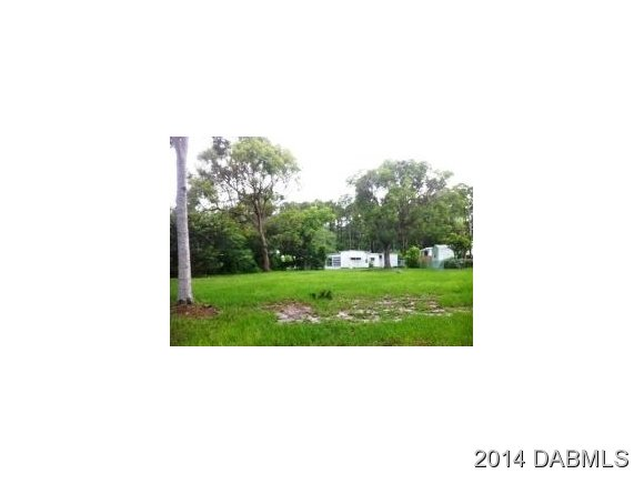 Real Estate for Sale, ListingId: 30746892, Pt Orange, FL  32127