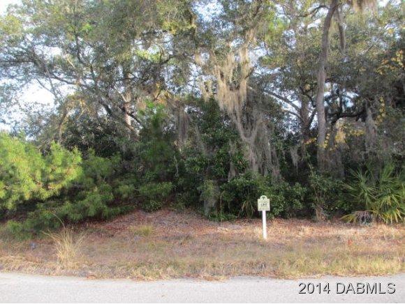 Real Estate for Sale, ListingId: 31057675, Palm Coast,FL32137