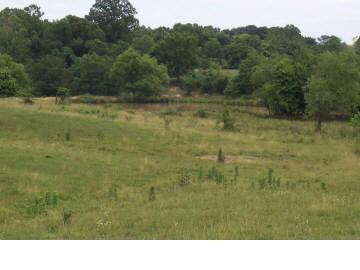 Real Estate for Sale, ListingId: 17803183, Carbondale,IL62901