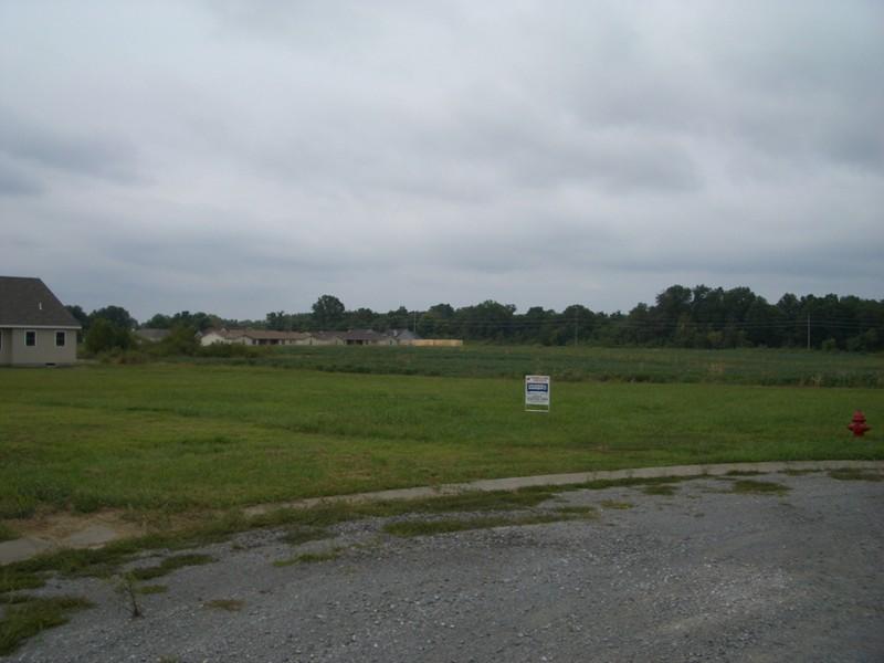 Real Estate for Sale, ListingId: 17803362, Herrin,IL62948