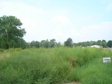 Real Estate for Sale, ListingId: 17803501, West Frankfort,IL62896