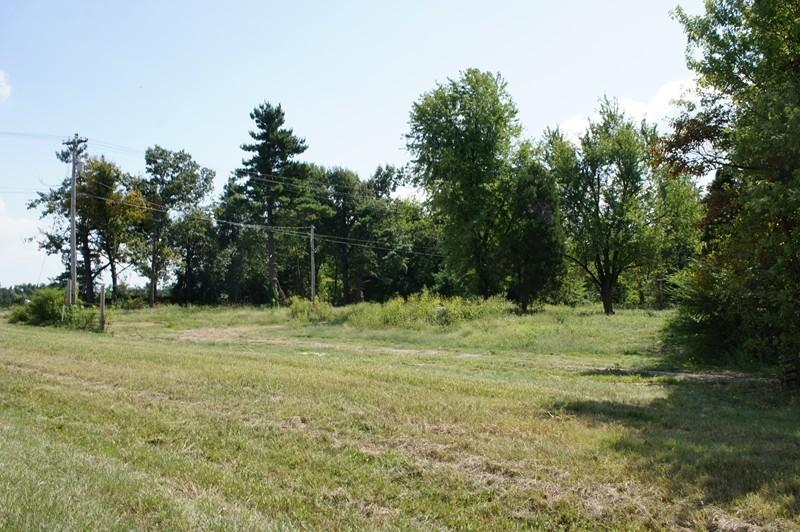 Real Estate for Sale, ListingId: 29349126, Metropolis,IL62960