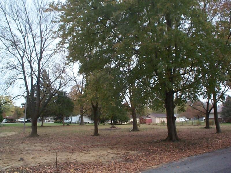 Real Estate for Sale, ListingId: 21445173, Benton,IL62812