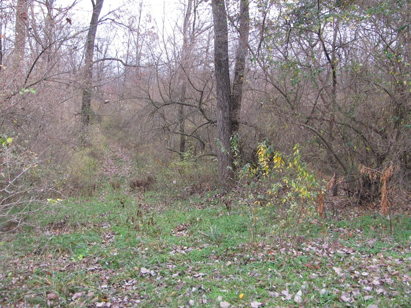 Image of Acreage for Sale near Du Quoin, Illinois, in Perry county: 9.03 acres