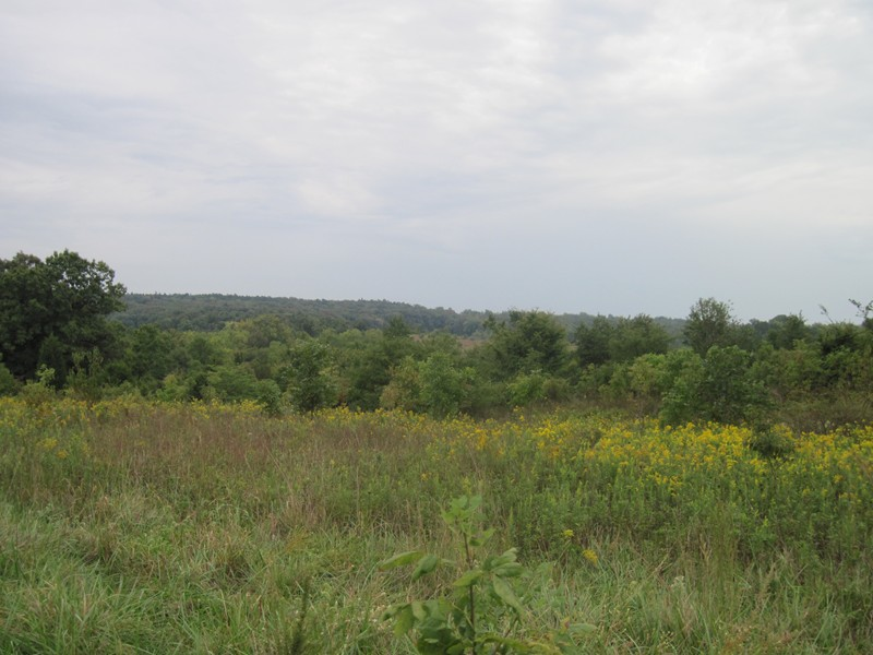 153.5 acres in Golconda, Illinois
