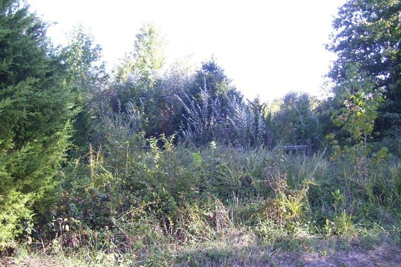 Real Estate for Sale, ListingId: 22789219, Murphysboro,IL62966