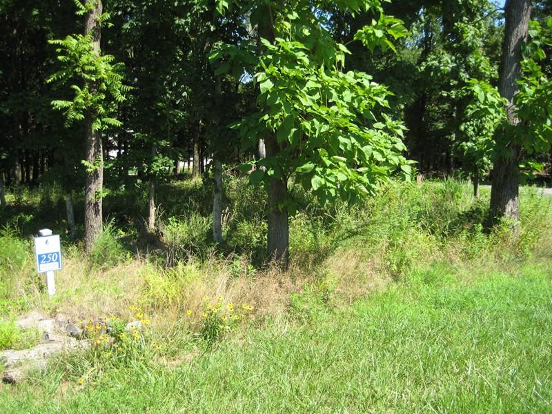 Real Estate for Sale, ListingId: 25205474, Goreville,IL62939
