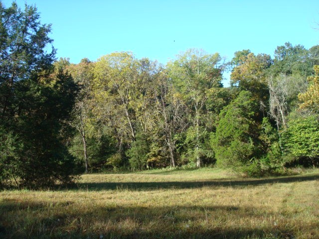 3 acres by Anna, Illinois for sale