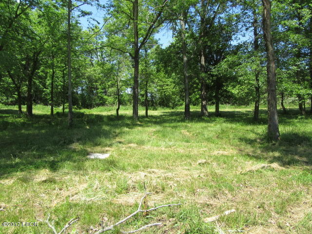 Image of Acreage for Sale near Bakerville, Illinois, in Jefferson County: 0.37 acres