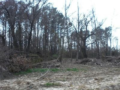 0.98 acres by Carterville, Illinois for sale