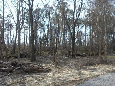 0.51 acres by Carterville, Illinois for sale