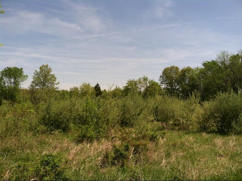 Real Estate for Sale, ListingId: 28015600, Benton,IL62812