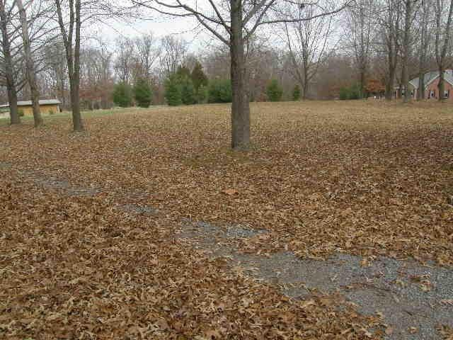 1 acres by Carterville, Illinois for sale
