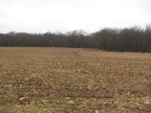 39.98 acres Pinckneyville, IL