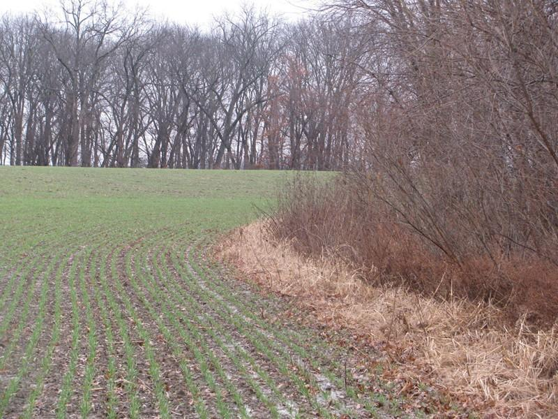 17.5 acres by Pinckneyville, Illinois for sale