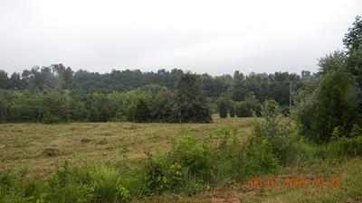 Pine Tree Ln, Cobden, IL 62920