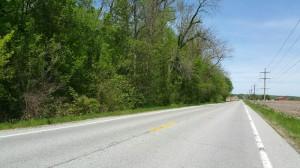 40 acres Pulaski, IL