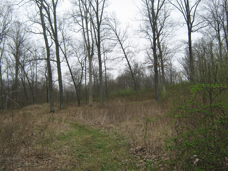 4.08 acres by Bluford, Illinois for sale
