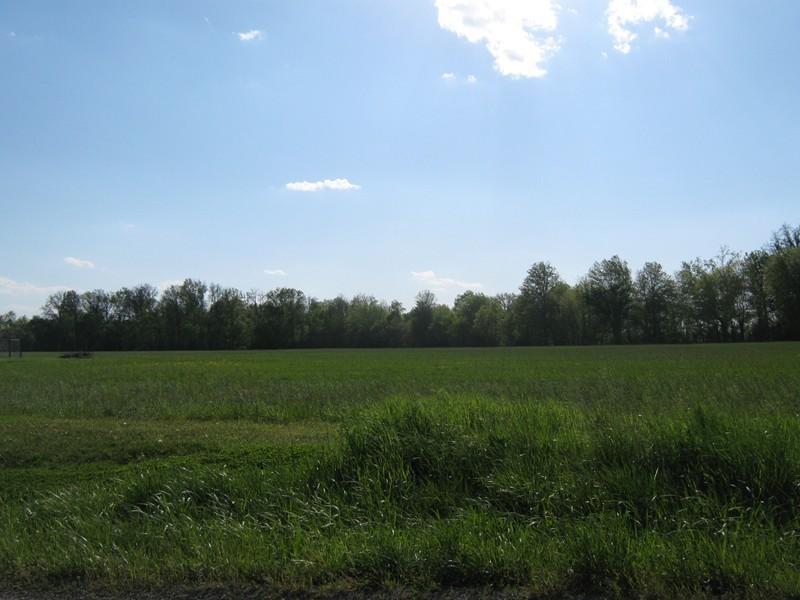 Real Estate for Sale, ListingId: 33107349, Mt Vernon,IL62864