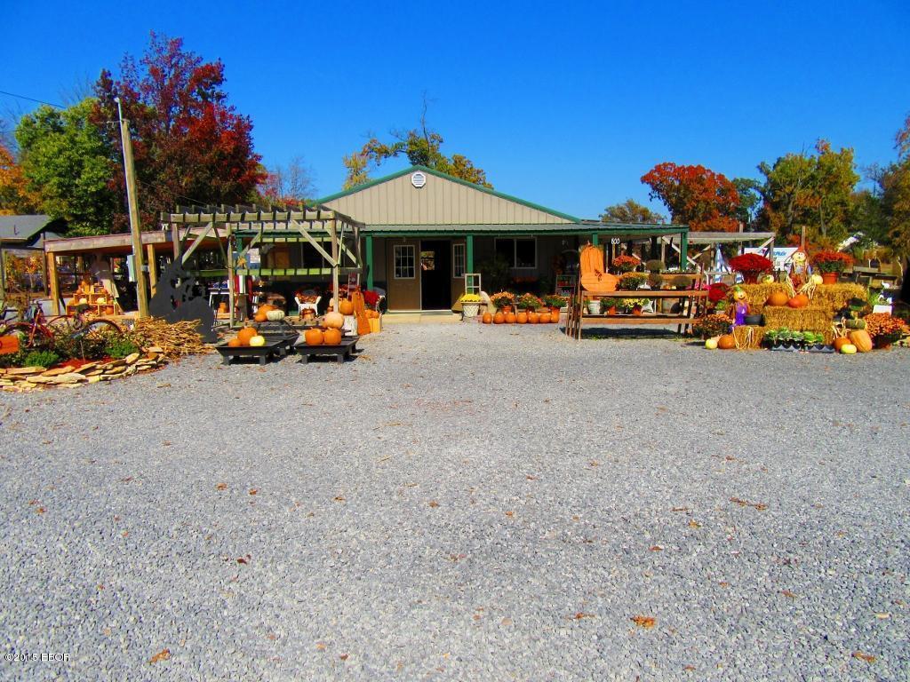 Real Estate for Sale, ListingId: 36042794, West Frankfort,IL62896