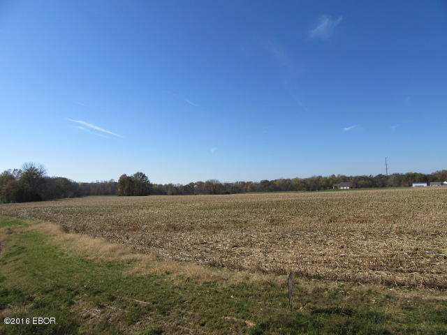 Image of  for Sale near Bakerville, Illinois, in Jefferson County: 30.08 acres