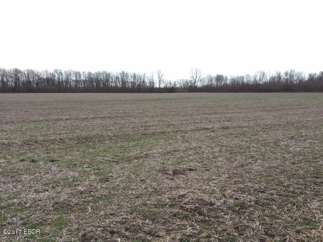 Best Food Plots For Southern Il
