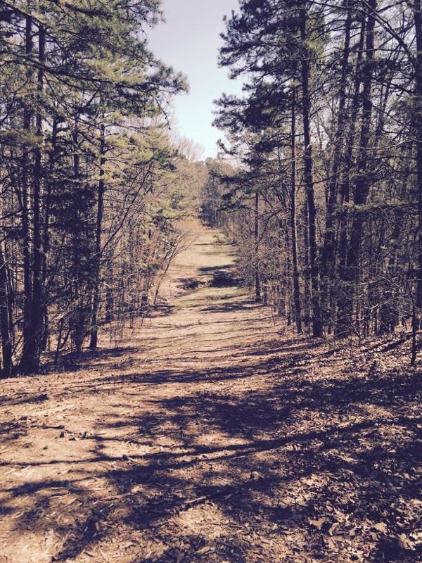 Shadows Edge Rd & Wildwood Tr Ozark, AR 72949