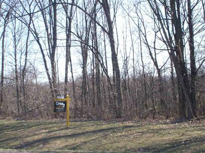 0.52 acres by Davison, Michigan for sale