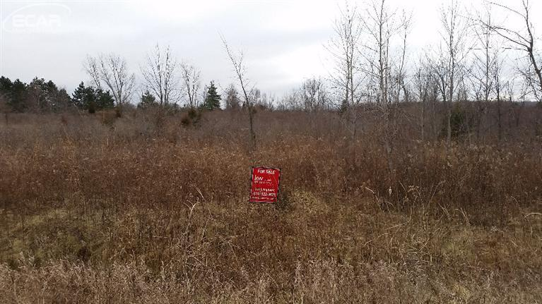 1.37 acres by Flushing, Michigan for sale