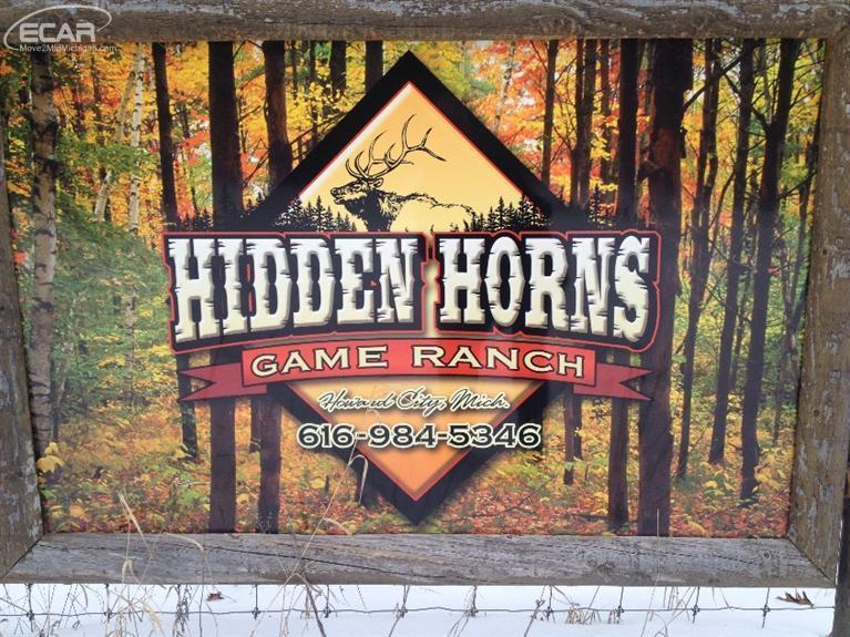 149 acres Howard City, MI