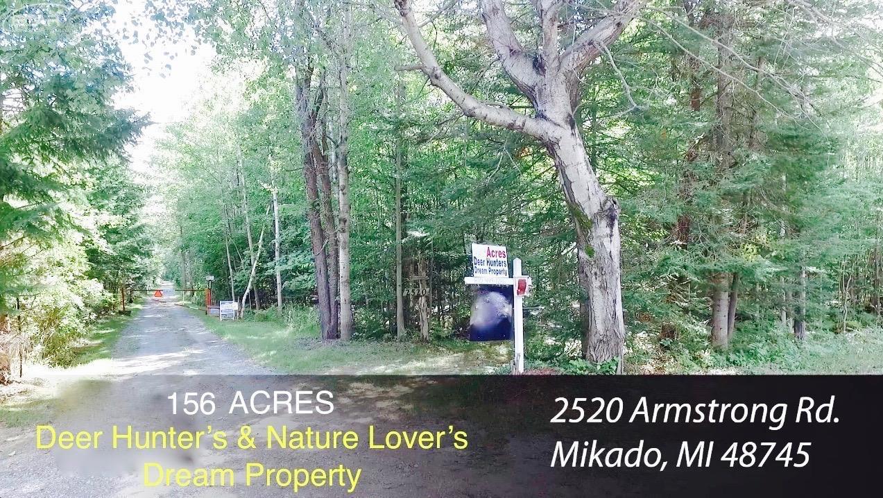 Real Estate for Sale, ListingId: 34404107, Mikado,MI48745