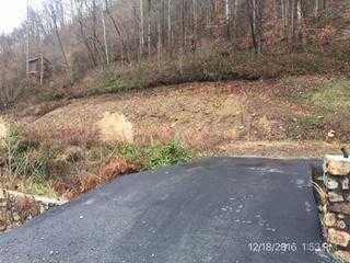 Photo of  BAISDEN  WV