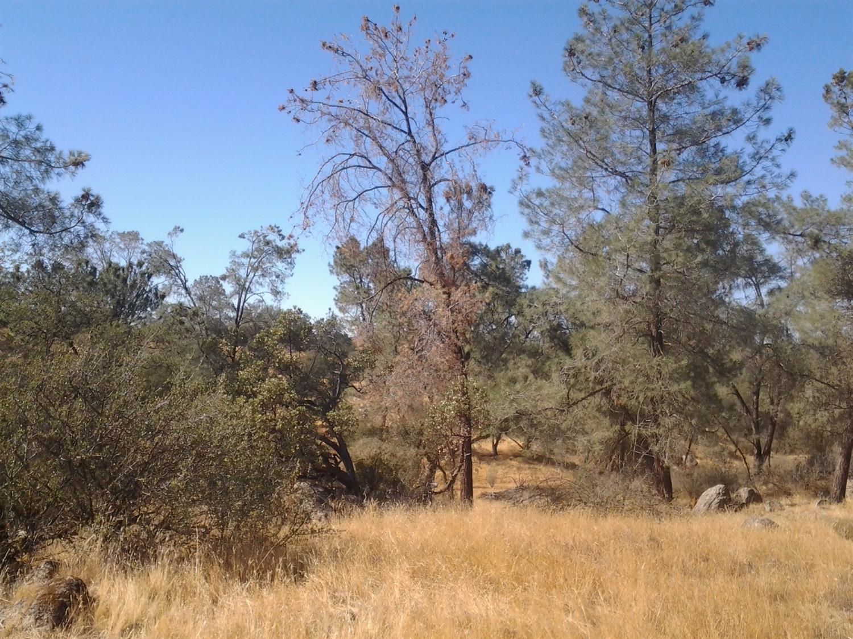 16 Broken Heart Lane Raymond, CA 93653