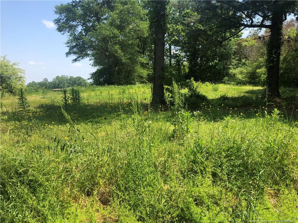 Lot 1,2,and 5 Minnie Hall Road Autryville, NC 28318