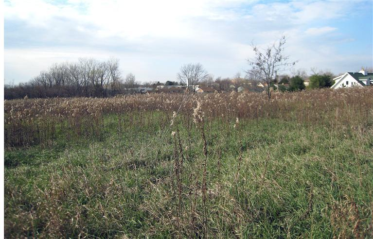 Image of Acreage for Sale near Fairfield, Iowa, in Jefferson county: 2.96 acres