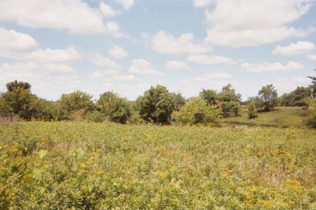 Image of Acreage for Sale near Beckwith, Iowa, in Jefferson county: 3.08 acres