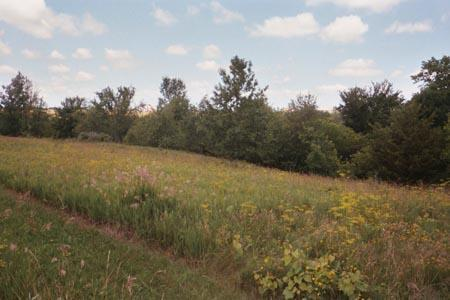 Image of Acreage for Sale near Fairfield, Iowa, in Jefferson county: 2.56 acres