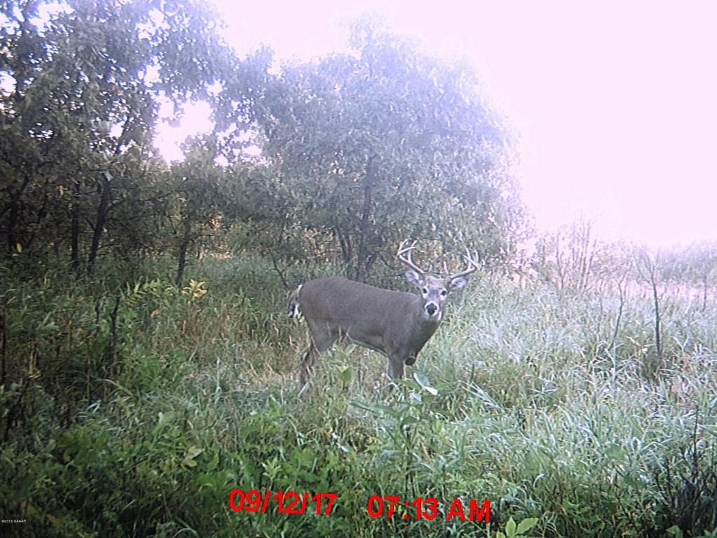 9746 County Road 30 NE, Nelson, MN 56355