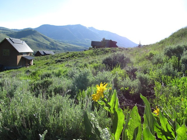 809 Bryant Ave, Crested Butte, CO 81224