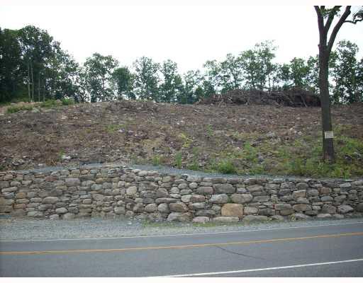 Real Estate for Sale, ListingId: 14925527, Pt Jervis,NY12771