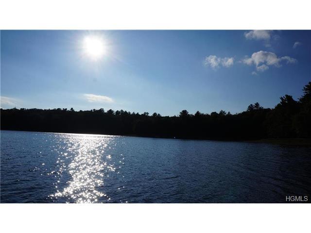Real Estate for Sale, ListingId: 28988671, Bethel,NY12720