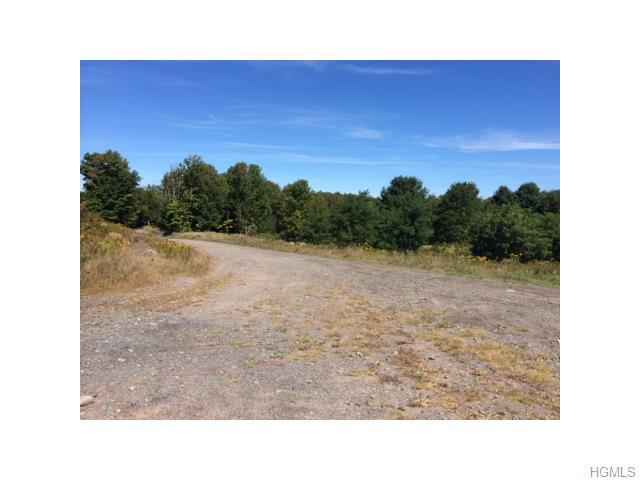 Real Estate for Sale, ListingId: 29533282, Bethel,NY12720