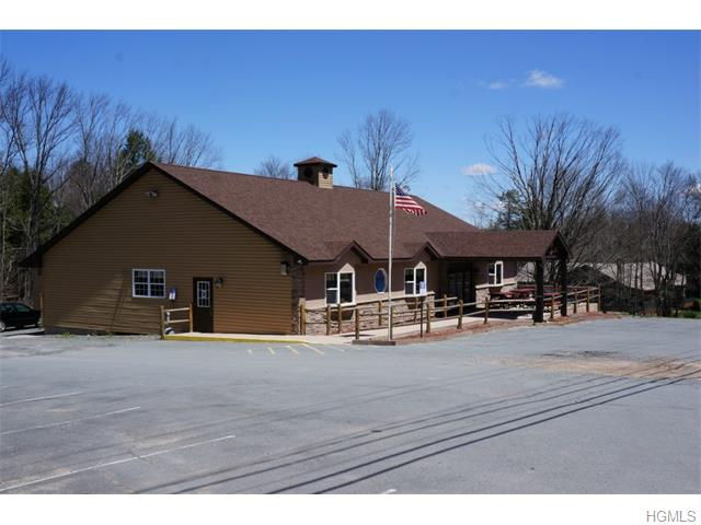 Real Estate for Sale, ListingId: 32153583, White Lake,NY12786